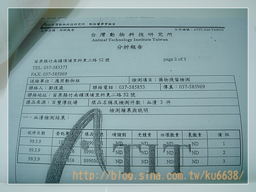 證書01.JPG
