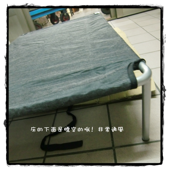 CIMG5076.JPG