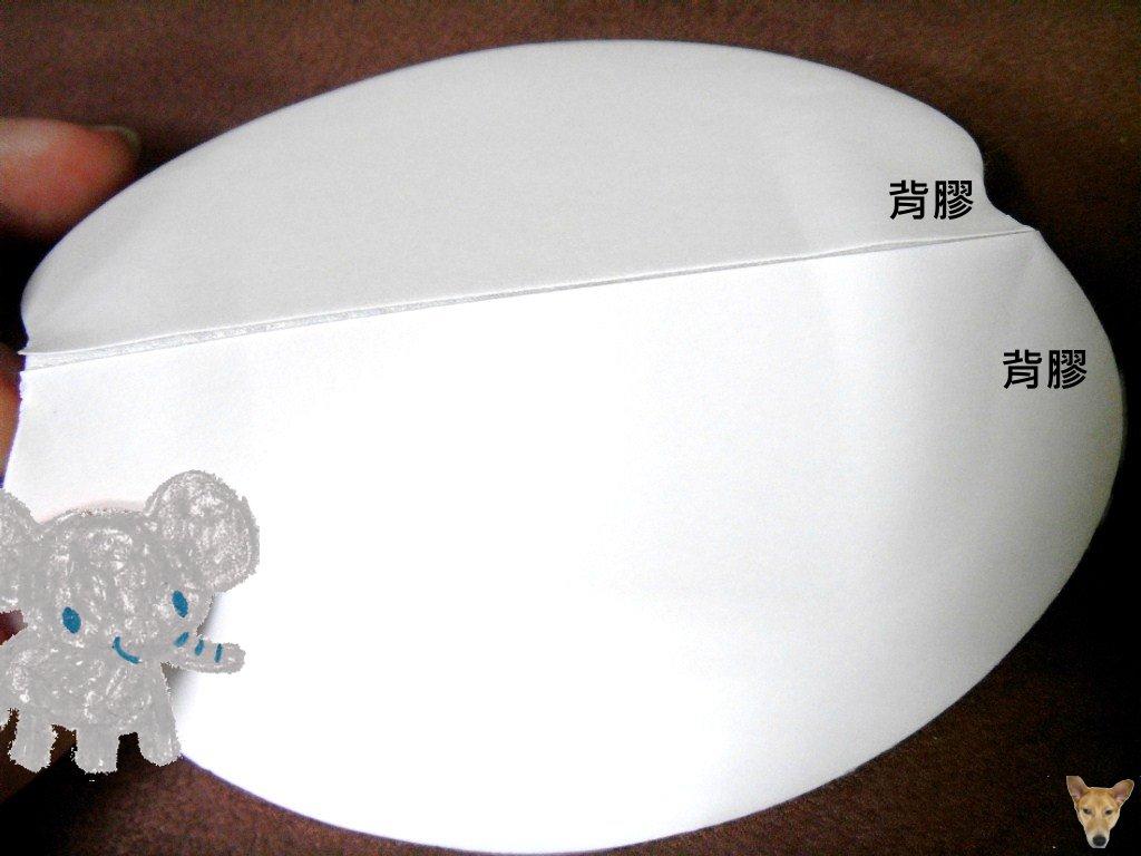SDC10041.JPG