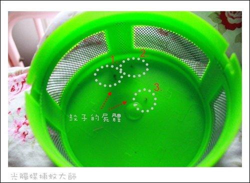 ap_F23_20110524022318431.jpg