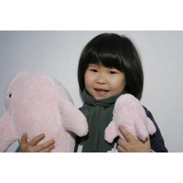 台灣白海豚抱枕(大)