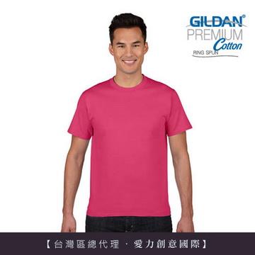 GILDAN 亞規成人短袖素面T (1件)