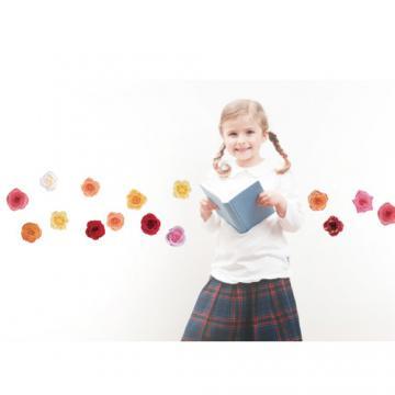 《DALI》創意無痕壁貼◆玫瑰(3張)