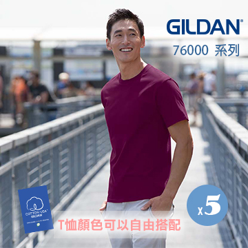 GILDAN 亞規成人短袖素面T (5件)